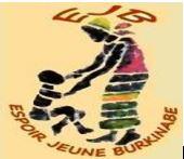 BTS SP3S : projet pour le Burkina Faso